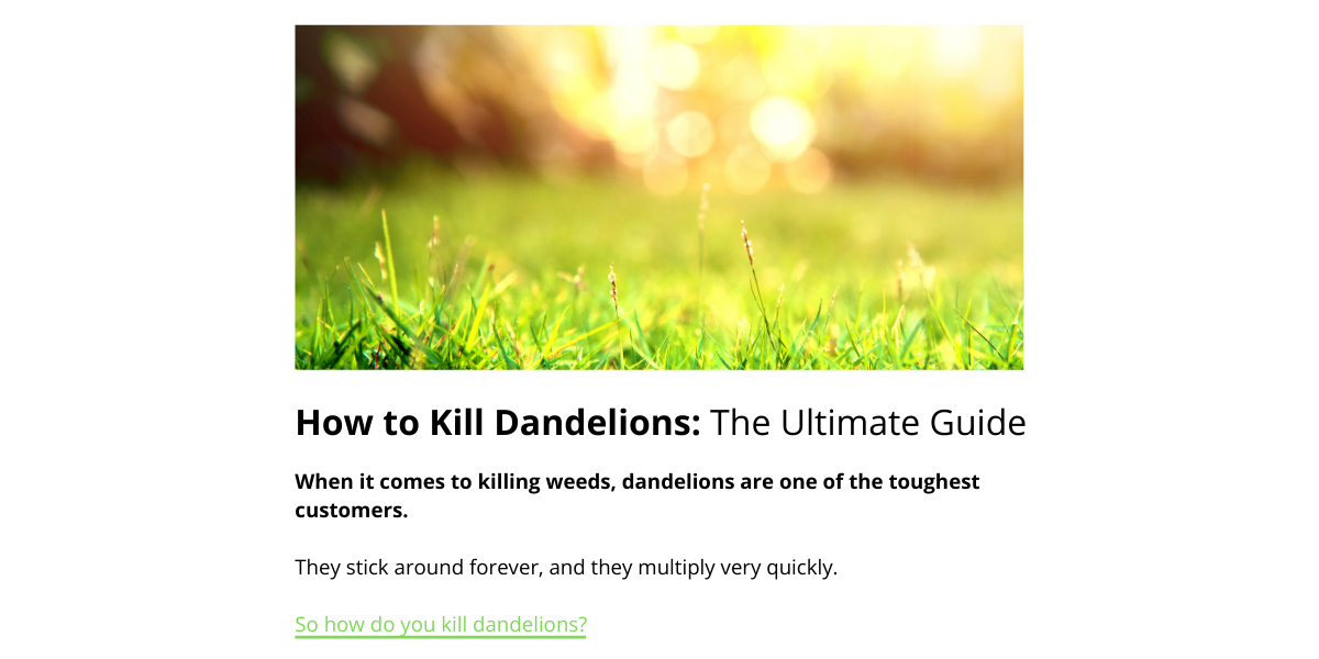 how-to-kill-dandelions-ultimate-guide-bad